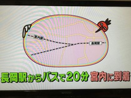 170408miyauchi.jpg